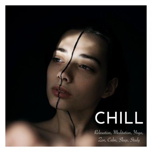 Chill: Relaxation, Meditation, Yoga, Zen, Calm, Sleep, Study de Various Artists