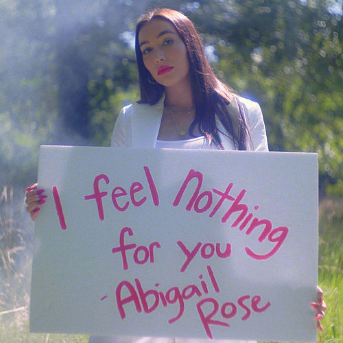 I Feel Nothing for You by Abigail Rose