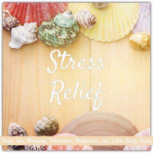 Stress Relief: Yoga, Spa, Massage, Relaxation, Meditation, Zen, Calm, Sleep, Study de Various Artists