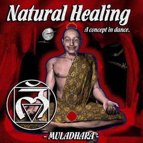 Natural Healing, Vol. 1 de Various Artists