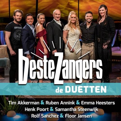 Beste Zangers Seizoen 12 (Aflevering 8 - Duetten) van Various Artists