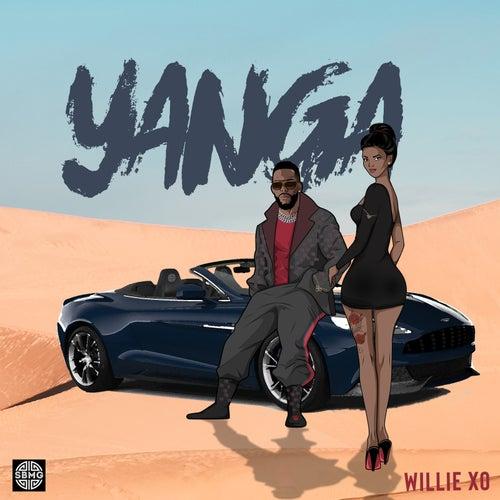 Yanga by Willie X.O