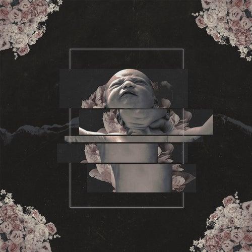 Born Rotten by Atena