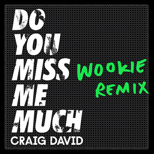 Do You Miss Me Much (Wookie Remix) van Craig David