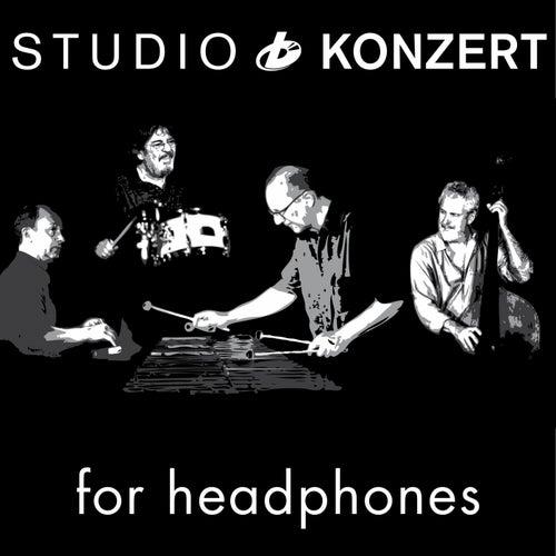 Studio Konzert for Headphones von Wolfgang Lackerschmid