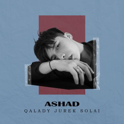 Qalady Jurek Solai by Asha D