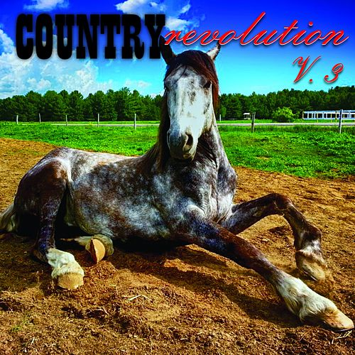 Country Revolution, Vol. 3 de Various Artists