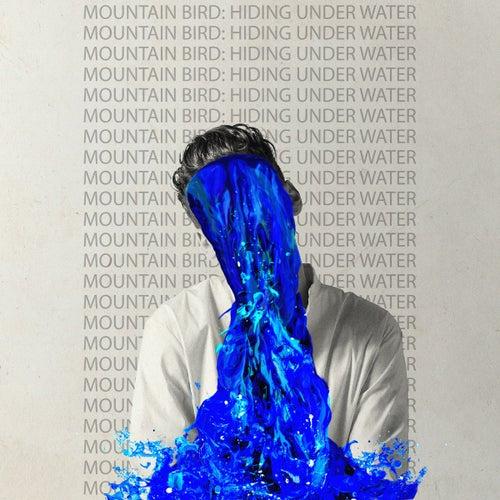Hiding Under Water de Mountain Bird