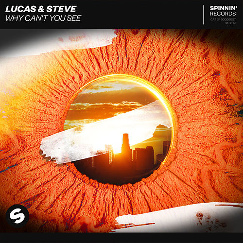 Why Can't You See by Lucas & Steve
