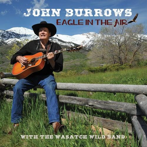Eagle in the Air de John Burrows