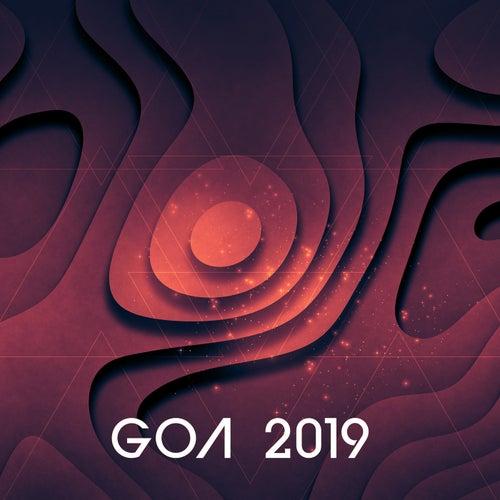 Goa 2019 de Various Artists