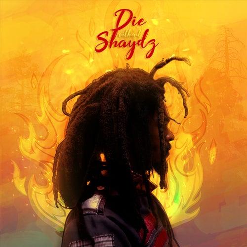 Die Without Shaydz by Silkki Wonda
