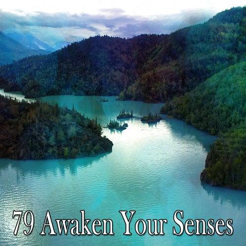 79 Awaken Your Senses by Zen Music Garden