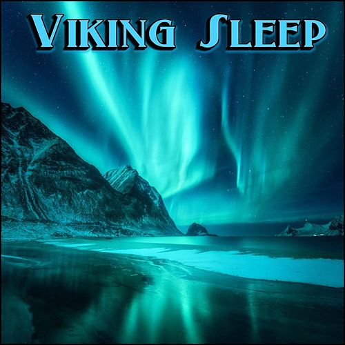 Viking Sleep de Derek Fiechter