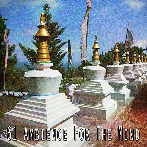 61 Ambience for the Mind by Zen Music Garden