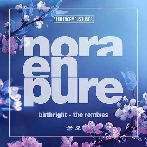 Birthright (The Remixes) von Nora En Pure