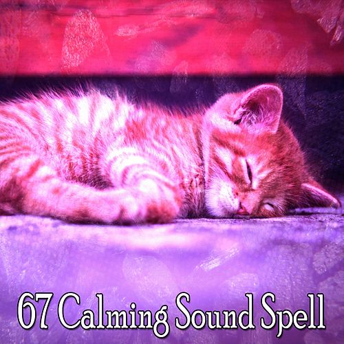 67 Calming Sound Spell by Ocean Waves For Sleep (1)