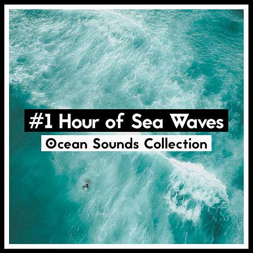 #1 Hour of Sea Waves de Ocean Sounds Collection (1)