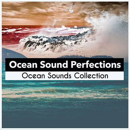 Ocean Sound Perfections de Ocean Sounds Collection (1)