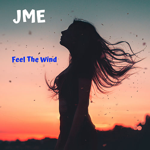 Feel The Wind de JME