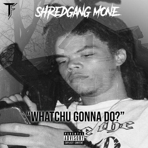 Whatchu Gonna Do von Shred Gang Mone