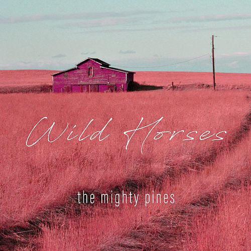 Wild Horses di The Mighty Pines