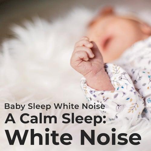 A Calm Sleep: White Noise by Baby Sleep White Noise