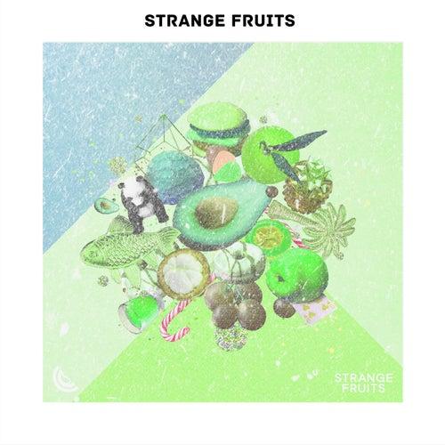 New EDM Songs 2019| Latest English Electronic Anthems of Strange Fruits von Various Artists
