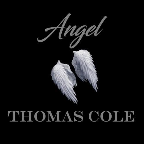 Angel de Thomas Cole