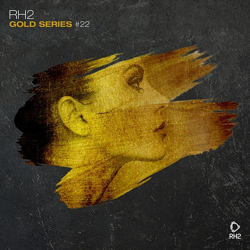 Rh2 Gold Series, Vol. 22 by Various Artists