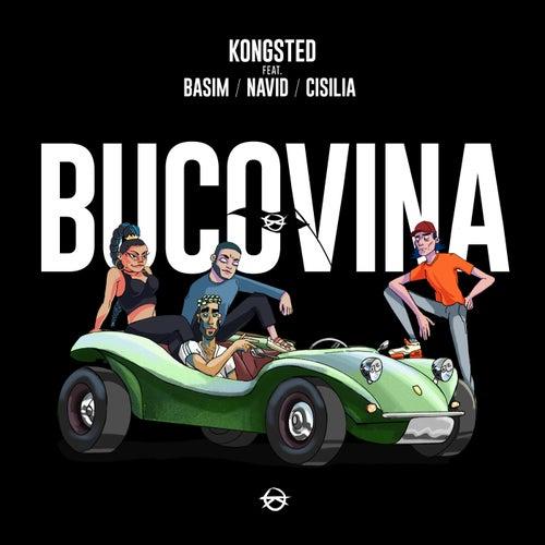 Bucovina by Kongsted