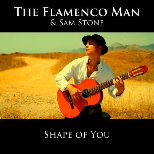 Shape of You von The Flamenco Man