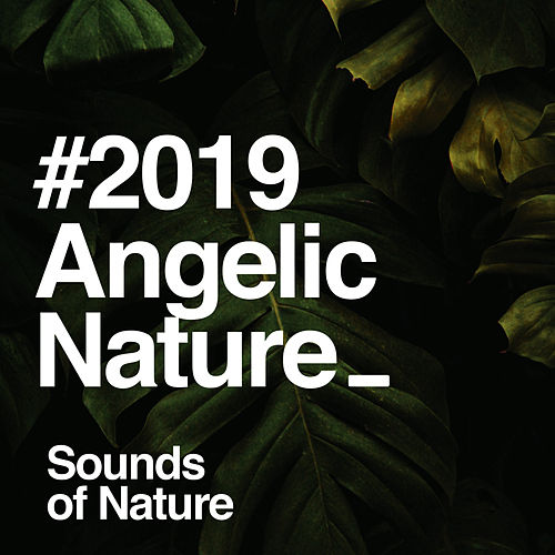 # 2019 Angelic Nature by Sounds Of Nature