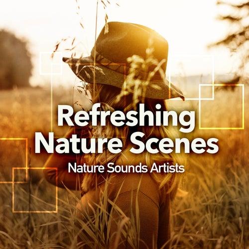 Refreshing Nature Scenes de Nature Sounds Artists