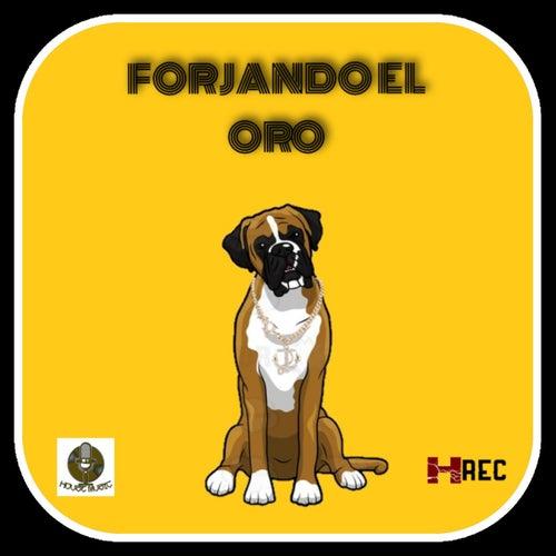 Forjando el Oro by Golden Dogg