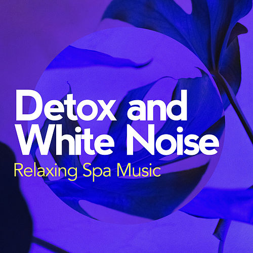Detox and White Noise by Relaxing Spa Music