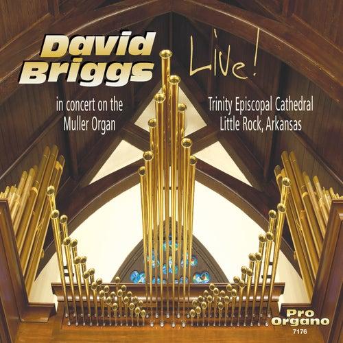 Bach, Liszt & Others: Works & Transcriptions for Organ (Live) von David Briggs