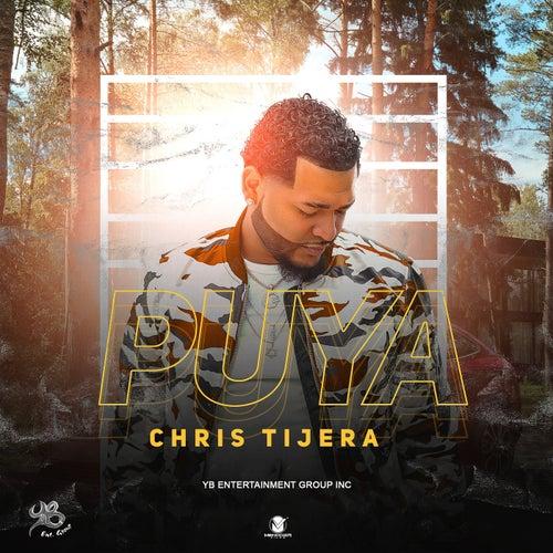 Puya by Chris Tijera