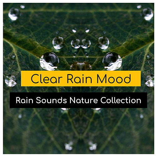 Clear Rain Mood de Rain Sounds Nature Collection