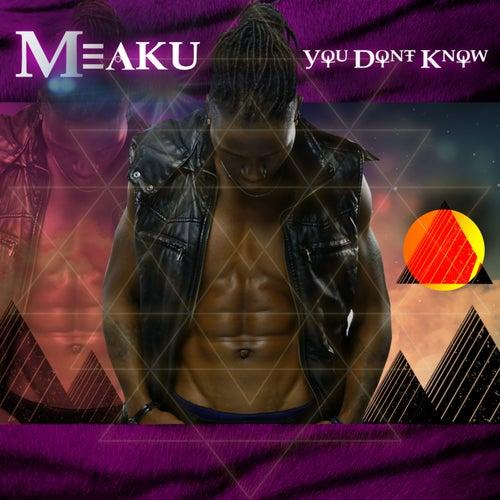 You Don't Know von Meaku