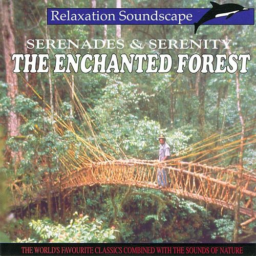 The Enchanted Forest by Anton Hughes