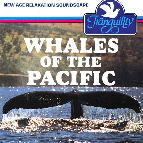 Whales Of The Pacific by Anton Hughes