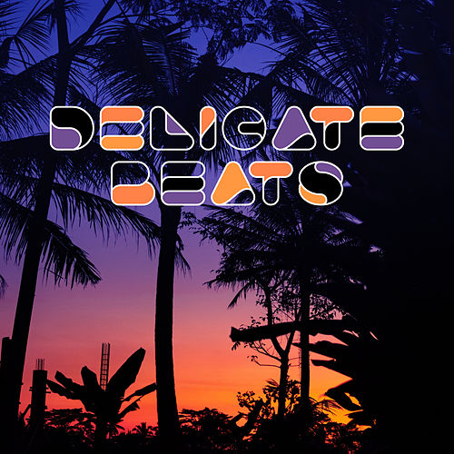 Delicate Beats: Pure Relax, Holiday Songs to Calm Down, Summer Chill, Perfect Relax Zone by Ibiza DJ Rockerz