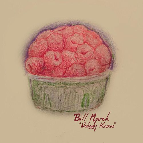 Nobody Knows by Bill March