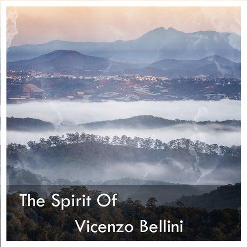 The Spirit Of Vicenzo Bellini von Vincenzo Bellini