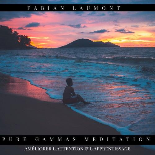 Pure Gammas Meditation (Améliorer L'attention & L'apprentissage) von Fabian Laumont