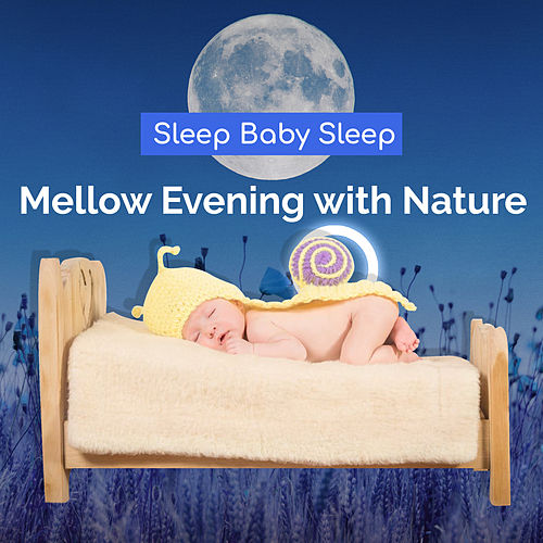 Mellow Evening with Nature by Baby Sleep Sleep