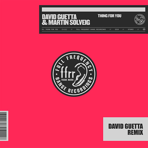 Thing For You (David Guetta Remix) de Various Artists