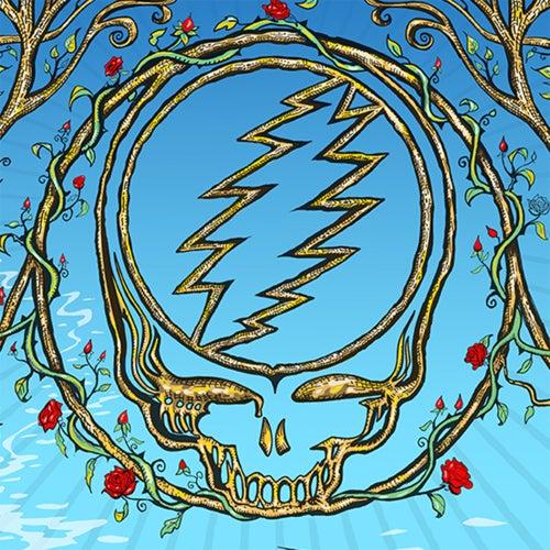Lockn' Festival, Arrington, VA, 8/26/2018 (Live) de Dead