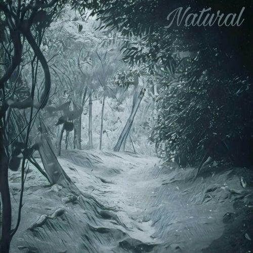 Natural von Jatr